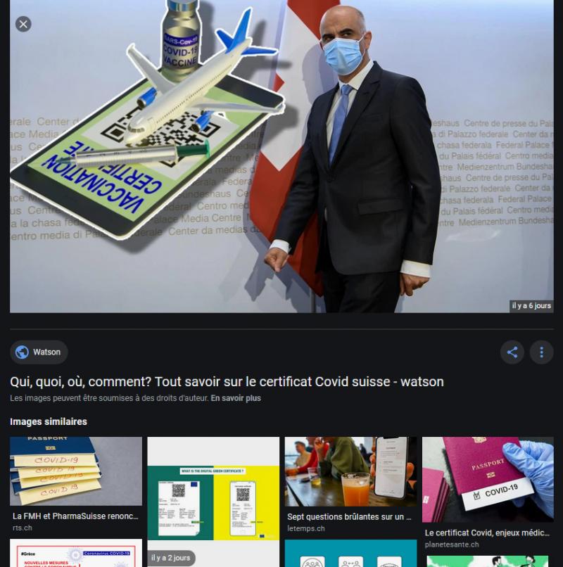 Demokratie im Pandemie-Modus: Der seltsame Fall des COVID-Zertifikats